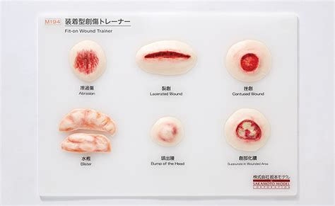 types of wound dressing pictures wearable type wound trainer m194 nursing index