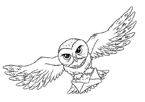 owl wings coloring page owl animal coloring pages bird that flies open wings
