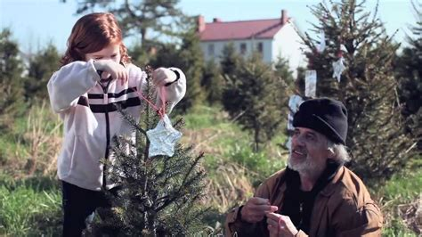 A Tree Miracle Free A Tree Miracle Trailer
