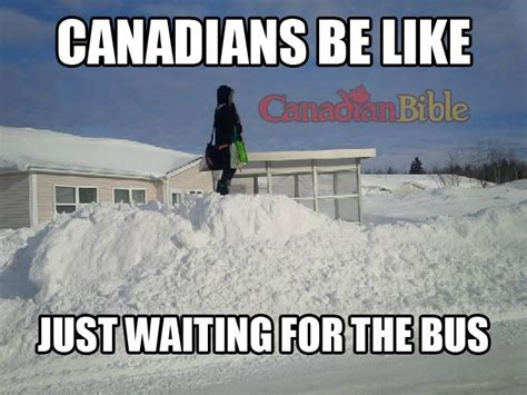 Canada Snow Meme - canadian problem just waiting for the bus canadian