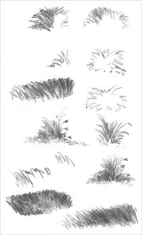 grass pattern drawing drawing grass and weeds tutorial by diane wright drawing