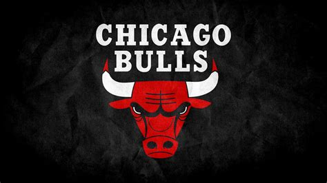 cikaso bulls chicago bulls free stock photos free stock photos