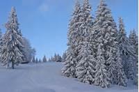 Winter Scene 8435687527jpg  Wikimedia Commons