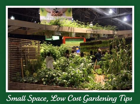 small space gardening plants in nanopics small space gardens