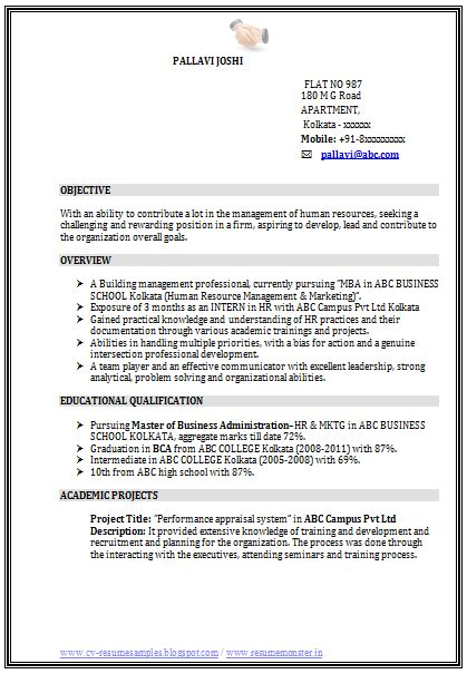 Resume Sles Word by Professional Curriculum Vitae Resume Template For All