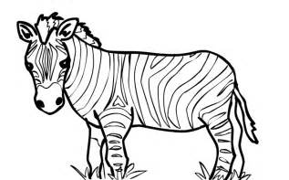 zebra template 40 zebra templates free psd vector eps png format