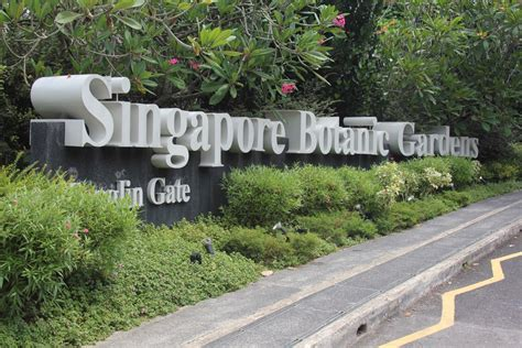 must see singapore botanic gardens live and let s fly