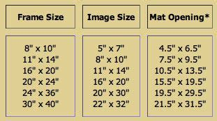 Standard Photo Mat Sizes by Standard Frame Sizes And Mat Openings Photography