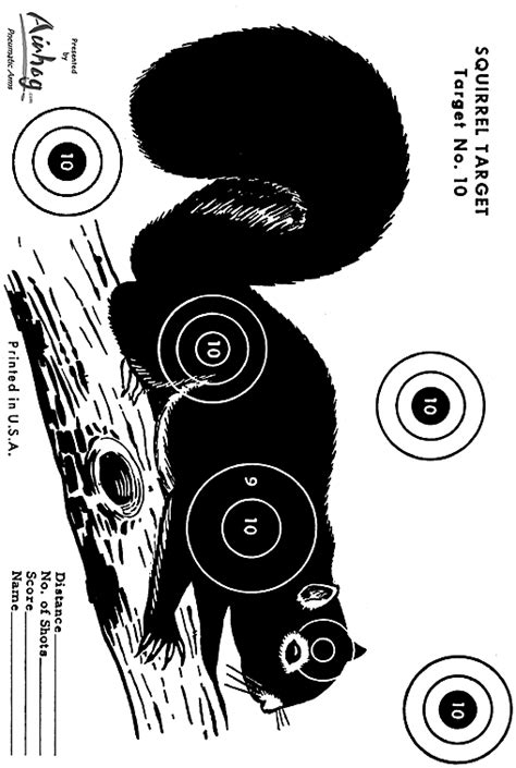 printable shooting targets squirrel pin squirrel targets image search results on pinterest