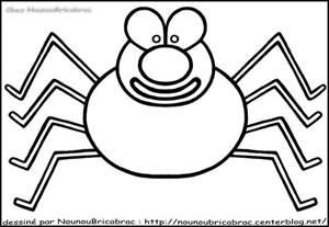 coloriage araign 195 169 e de mer