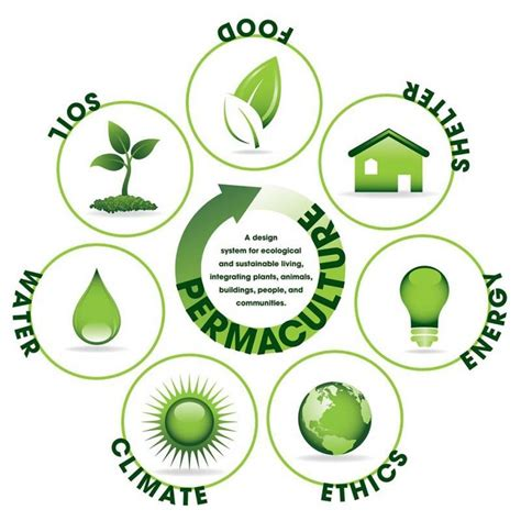 design for the environment definition want a solid definition of permaculture here ya go
