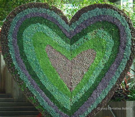 65 best images about succulents xeriscape on pinterest