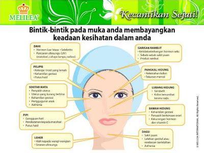 Krim Wajah Melilea kosmetik organik melilea international