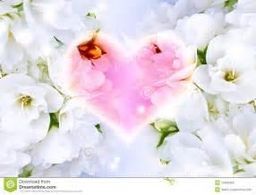 beautiful love background stock photography image 12452462