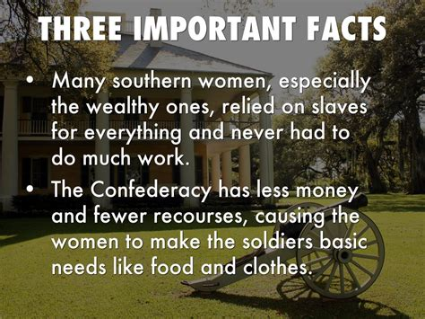 some key facts about v stiviano the woman at the center women the civil war by chandler lanham