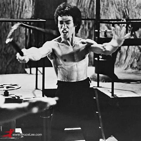 Dragonfly Desktop App bruce lee using his famed weapon the nunchaku scene from