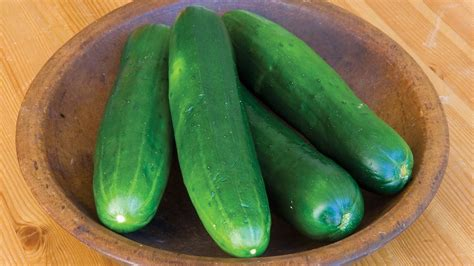 how to grow cucumbers in a garden