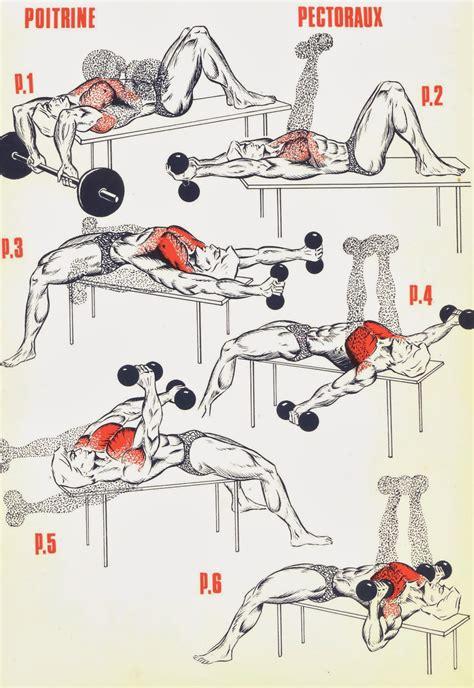 fitness pectoraux exercices