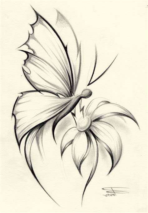 butterfly drawing tattoo drawing art gallery