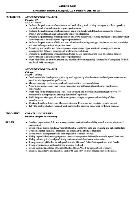 account coordinator resume sles velvet