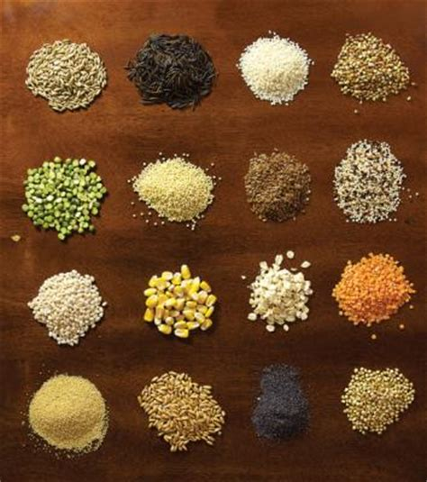 4 exles of whole grains whole grains guide recipes cooking tips and nutrition