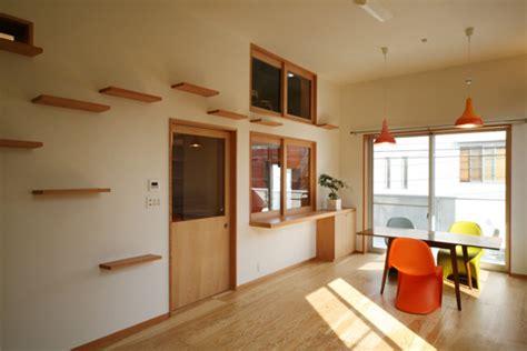 cat friendly house design