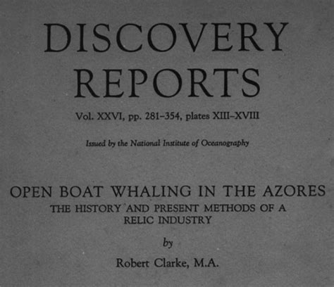 understanding the open boat open boat whaling in the azores an understanding