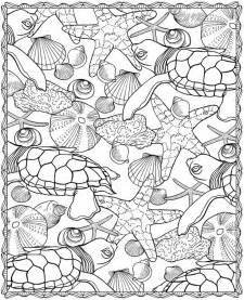 turtle coloring pages for adults seashells coloring pages az coloring pages