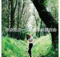 柳州seo