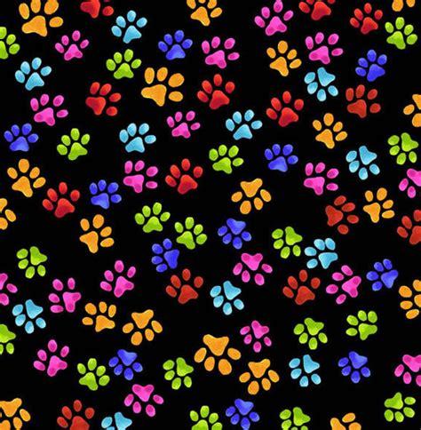 rainbow paw print wallpaper bing images paw prints