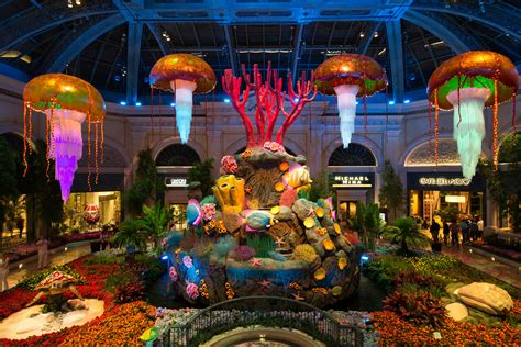 botanical gardens in las vegas bellagio conservatory brings underwater to the