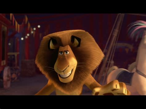madagaskar film lion name images of alex the lion ben stiller in quot madagascar 3