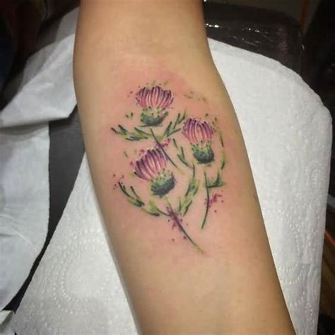 scottish thistle tattoo designs 70 scottish tattoos and designs golfian