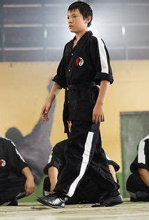 chinese actress karate kid 10 best zhenwei wang cheng images on pinterest male