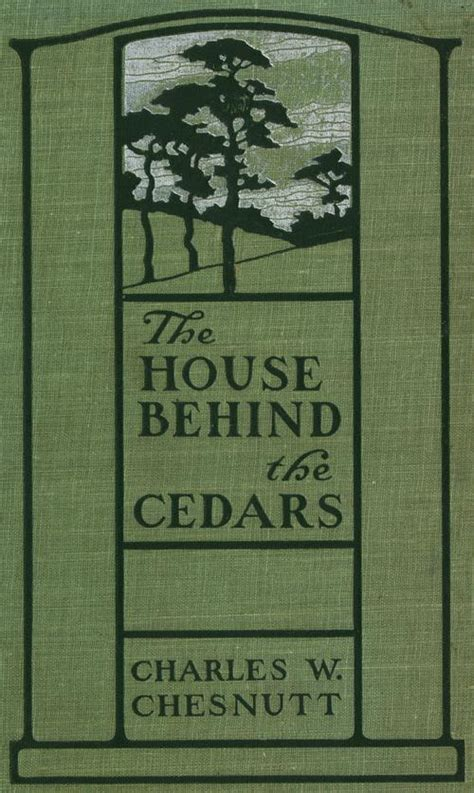 Themes In The House Behind The Cedars | the house behind the cedars book wikipedia