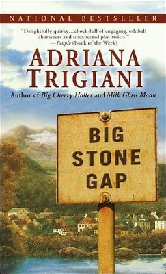 trigiani series reading for sanity a book review big gap