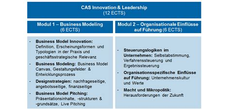Mba Innovation And Data Analysis by Cas Innovation Leadership School Of Management And