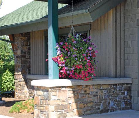 berl bank valley journal photo galleries gt polson in bloom 2012