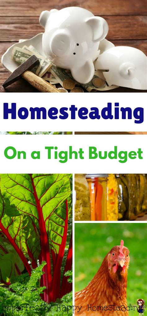 8 Tips For A Tight Budget by 25 Best Ideas About Small Farm On