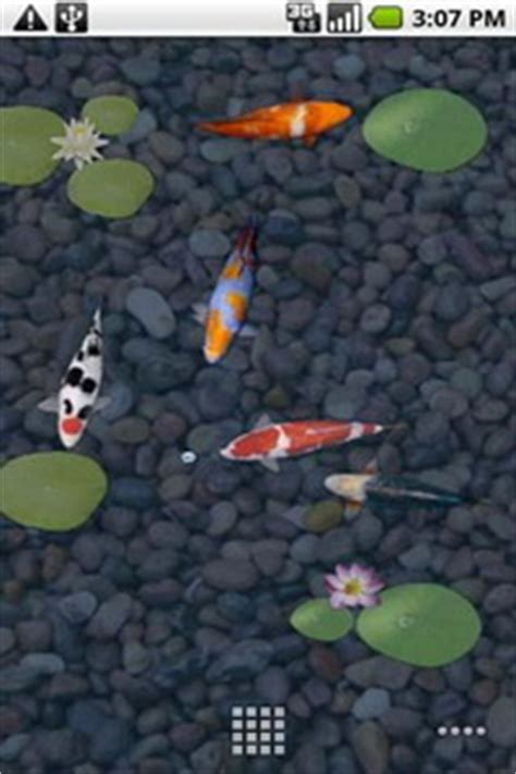 Anipet Koi Live Wallpaper Full Version Free Download | anipet koi trial live wallpaper for android android live