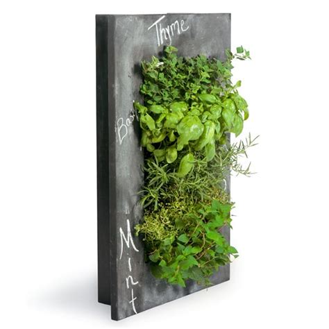 1000 ideas about wall planters on wall