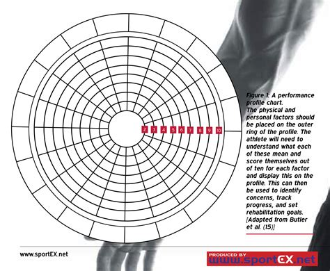 blank performance profile wheel template workplace learning and development