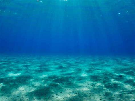 imagenes extraordinarias del mar image gallery imagenes fondo del mar
