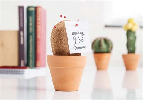desk cactus cork cactus is a prickly desk organizer gadgetsin