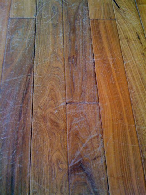 scratches in hardwood floor finish scratches on hardwood floors