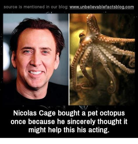 Nic Cage Meme - 25 best memes about nicolas caged nicolas caged memes