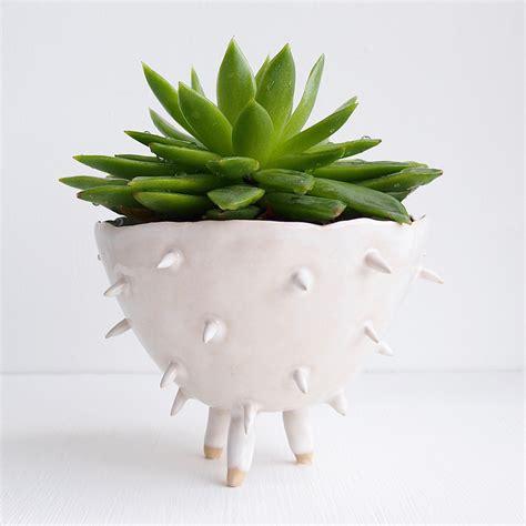 ceramic succulent planter handmade white ceramic spiky cactus planter ceramic cactus