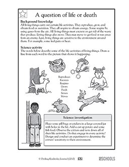 Free Fourth Grade Science Worksheets by 3rd Grade 4th Grade Science Worksheets A Question Of
