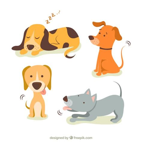cute illustrations  dogs vector