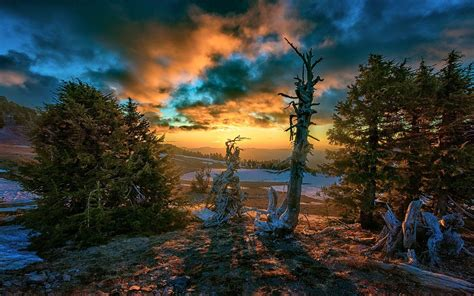 landscape nature fall sunset clouds snow trees hill
